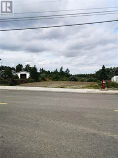 Vacant Land for sale in 228 Main Street, Grand Falls - Windsor, Newfoundland and Labrador