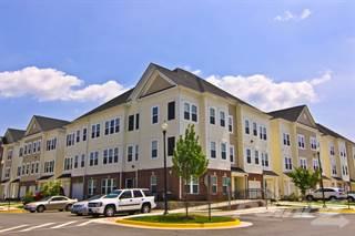 Apartment for rent in Barrington Park - Adams I, Manassas, VA, 20110