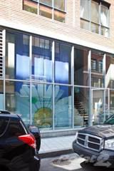 Comm/Ind for rent in 45 Rue des Soeurs-Grises, Montreal, Quebec