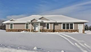 Single Family for sale in 110 Leibold, East Dubuque, IL, 61025