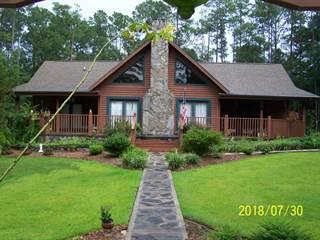 Single Family en venta en 1039 VIEW Drive, Alford, FL, 32448