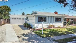 Single Family for sale in 1549 Rieger Ave, Hayward, CA, 94544