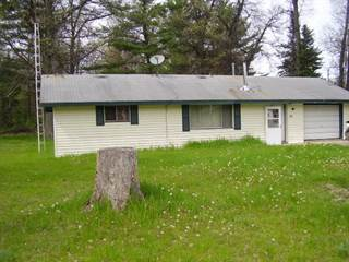 Single Family for sale in 36 Troyer Drive, Mio, MI, 48647
