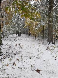 Lots And Land for sale in 6099 Dewey W Road, Ludington, MI, 49431