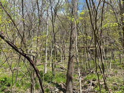 Farm And Agriculture for sale in 0000 Cabin Creek Road, Stanton, KY, 40380