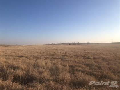 Farm And Agriculture for sale in County Road 14, Shamrock, TX, 79079