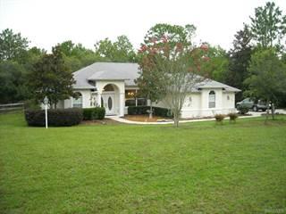 Single Family for sale in 3045 W Blossom Drive, Pine Ridge, FL, 34465