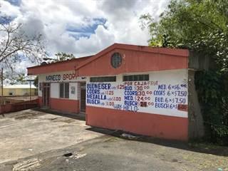 Comm/Ind for sale in 174 CARRETERA 174, Aguas Buenas, PR, 00703