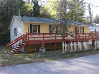 Residential Property for sale in 82 BOX 511 (4389 Seng Crk Rd) Road, Whitesville, WV, 25209