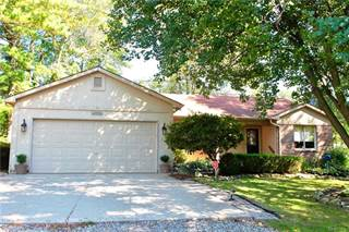 Single Family for sale in 1397 Woodfield, Orion Township, MI, 48362
