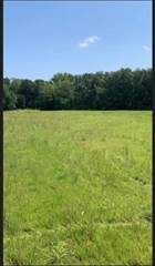 Land for sale in Lot 1 Shannon Avenue, Smithville, MO, 64089
