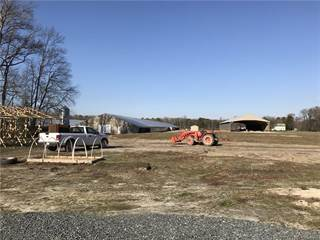 Farm And Agriculture for sale in 9092 Old Dagsboro, Delmar, MD, 21875