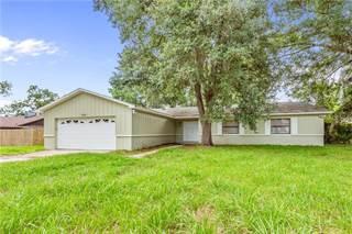 Single Family for sale in 4109 ROSE PETAL LANE, Orlando, FL, 32808