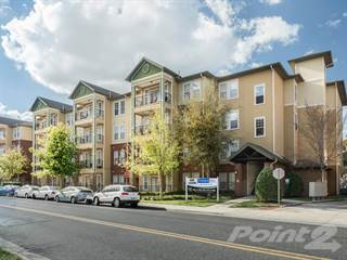 Apartment for rent in Campus View Place - Two Bed Two Bath, Gainesville, FL, 32601