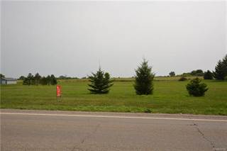 Land for sale in 13151 SEYMOUR Road, Greater Argentine, MI, 48436
