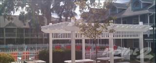 Apartment for rent in Arlington Square List - The Nolita, Gainesville, FL, 32601