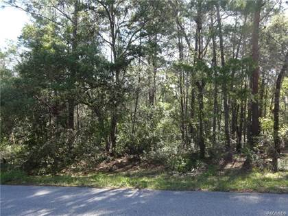 Lots And Land for sale in 7310 N LIME Drive, Citrus Springs, FL, 34433