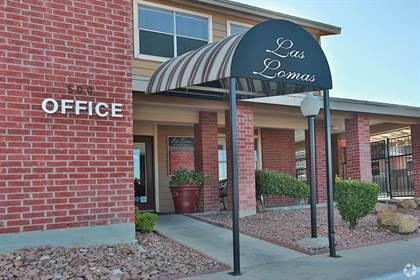 Apartment for rent in 500 Rubin Drive, El Paso, TX, 79912