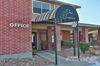 Apartment for rent in LAS LOMAS, El Paso, TX, 79912