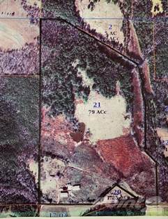 Lots And Land for sale in COUNTY ROAD 341, Falkner, MS, 38629