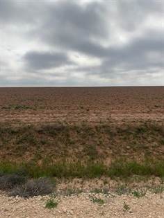 Farm And Agriculture for sale in 0 County Road 130, Ralls, TX, 79357