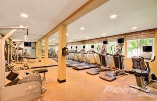 Apartment for rent in Rising Glen - Fern, Carlsbad, CA, 92008