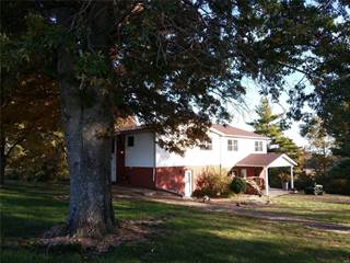 Single Family for sale in 9628 Nike Drive, New Athens, IL, 62264