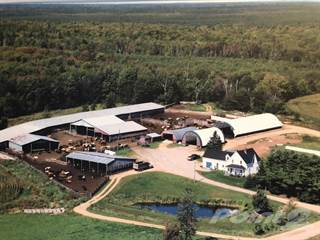 Farm And Agriculture for sale in 550 Cookville Road, Greater Sackville, New Brunswick
