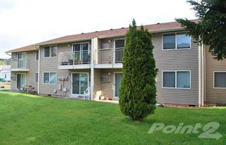 Apartment for rent in Mountain View - 1 Bedroom, Oakridge, OR, 97463
