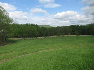 Farm And Agriculture for sale in 264 Maverick Lane, Green Sulphur Springs, WV, 25976