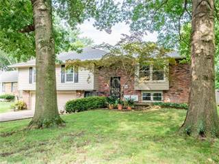 Single Family for sale in 3810 NE Woods Court, Lee's Summit, MO, 64064