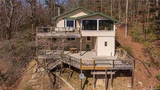 Single Family for sale in 425 Arrowhead Ridge Road, Eastatoe, NC, 28712