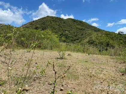 Residential Property for sale in Bo Algarrobo Carr 14 Km 42.8 Int, Aibonito, PR, 00705