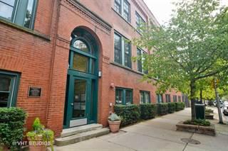 Condo for sale in 1335 W. Altgeld Street 1D, Chicago, IL, 60614
