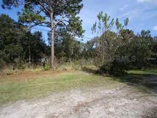 Land for sale in QUEENER, Port Richey, FL, 34668