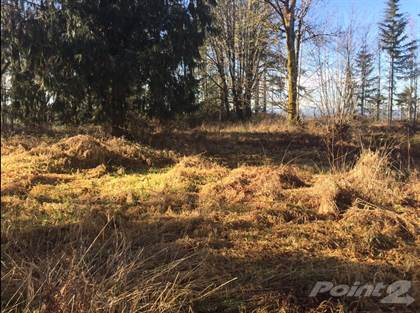 Lots And Land for sale in 144-38-18 Loop Rd, Centralia, WA, 98531