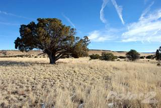 Land for sale in Lot 112, Wildflower Trail, Quemado, NM, 87829