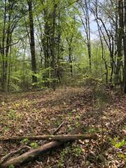Land for sale in BROWNTOWN, Crossville, TN, 38572