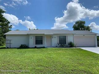 Single Family for sale in 13009 Santee Street, Spring Hill, FL, 34609