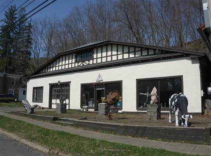 Commercial for sale in 25 Marion Avenue, Gilbertsville, NY, 13776