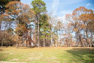 Lots And Land for sale in Lot 4 Dogwood Lakes Cir, Bullard, TX, 75757
