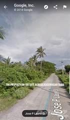 Residential Property for sale in Barrio Alegre, Oton, Iloilo, Oton, Iloilo
