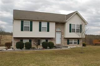 Single Family for sale in 180 Ten Mile, Crittenden, KY, 41030