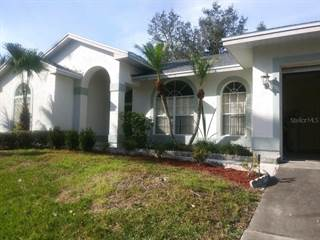 Single Family for rent in 1706 SUNKISSED DRIVE, Tarpon Springs, FL, 34689