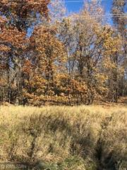 Land for sale in Xxx 411th Avenue NW, Stanchfield, MN, 55006