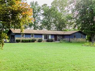 Single Family for sale in 9641 Old State Rte 13, Carrier Mills, IL, 62917
