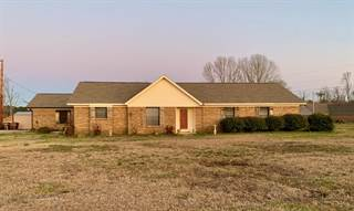 Single Family for sale in 40062 Seely Dr, Hamilton, MS, 39746
