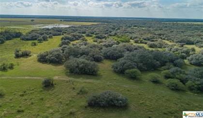 Lots And Land for sale in 13146 County Road 360, Louise, TX, 77455