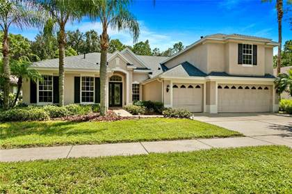 Residential Property for sale in 19221 AUTUMN WOODS AVENUE, Tampa, FL, 33647