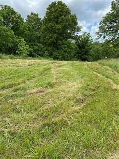 Farm And Agriculture for sale in 0 JAYBIRD Lane, Lebanon, MO, 65536